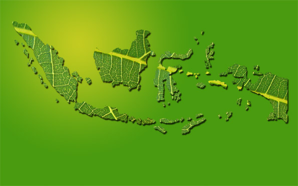 tutorial make a map of Indonesia with leaf textures using photoshop